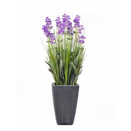 Individuelle planter