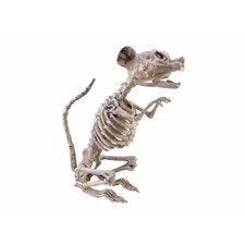 Halloween Skeleton Rat. 32X10X16 Cm.