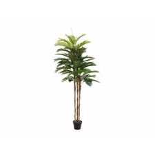 Kentia palm tree, artificial plant, 180cm
