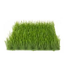 Artificial grass tile, sun, 25x25cm